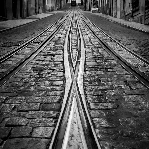 .: Crossed Lines :.