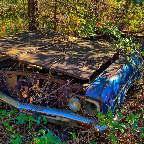 Rusty, old, junked car in the woods